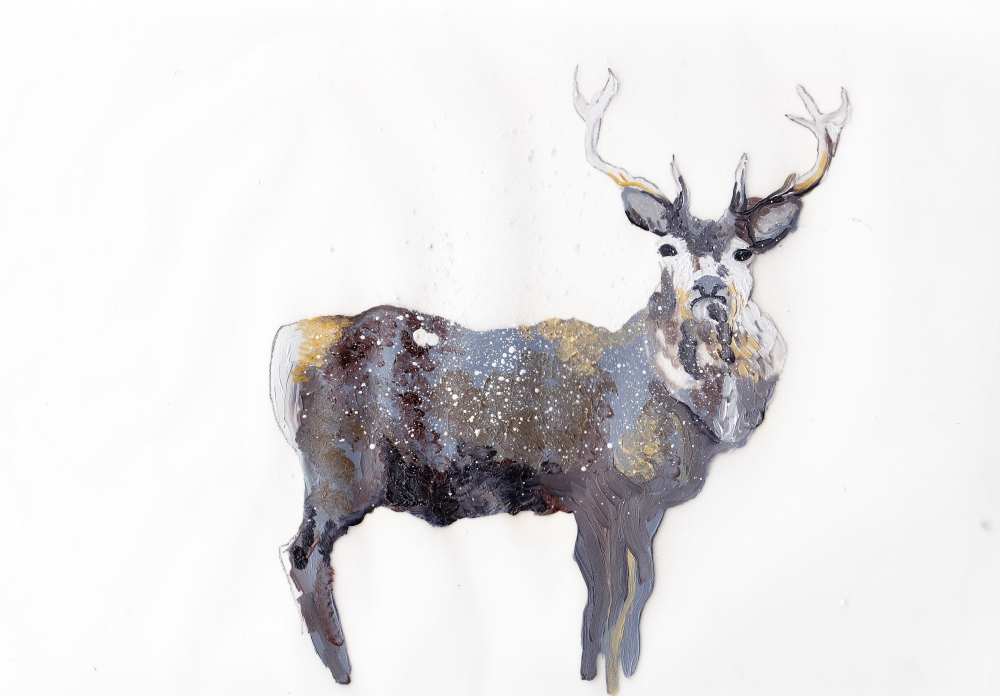 study for stag